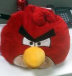 Collins Angry Bird Atlantic BT Egg Drop Contest