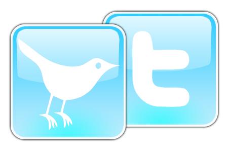 Twitter Logo 8 Social Media tips