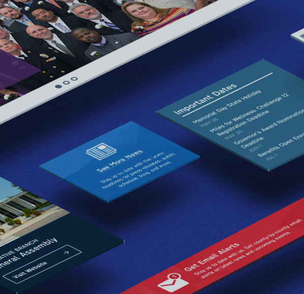 Government Web Design Case Study